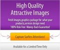High Quality Coin Collecting JPG PSD Images Graphics Package